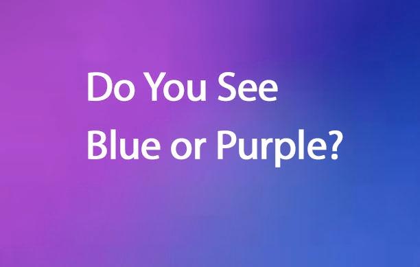 Blue or Purple - It Depends