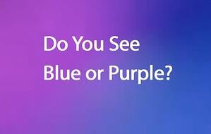 Blue or Purple - It Depends