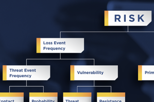 FAIR Model - Risk - Threat Event Frequency - Vulnerability