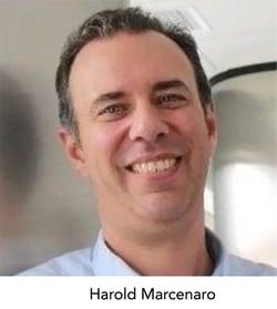 Harold Marcenaro - FAIR Inst 2020