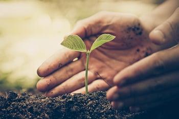 How to Start a FAIR Program - Start Small - Growing a Plant
