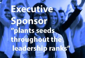 Team Leader - Executive Sponsor - How to Win Buy-in for a FAIR Quantitative Risk Management Program 2